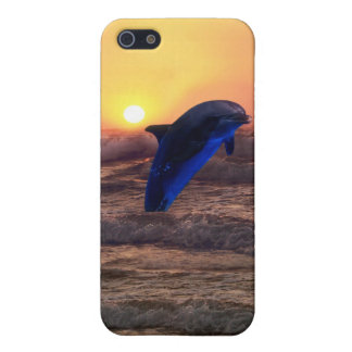 Dolphin at sunset cover for iPhone SE/5/5s