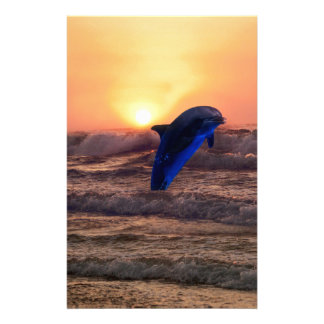 Dolphin at sunset stationery