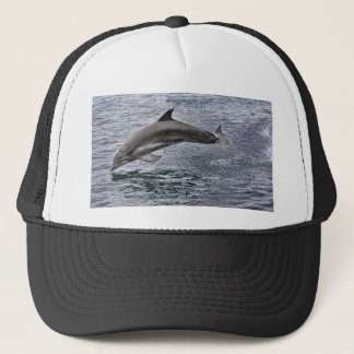 Dolphin Ball Cap
