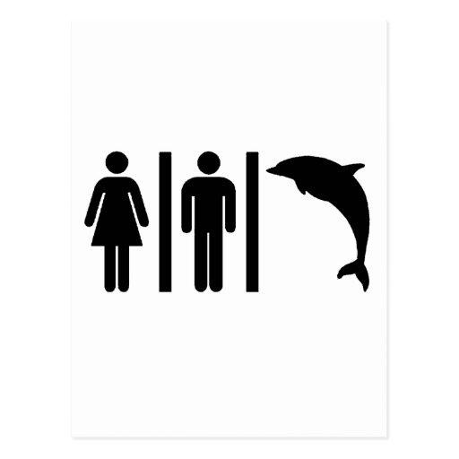 Dolphin Bathroom Postcard