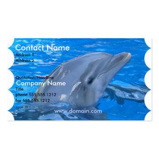 Dolphin Business Card