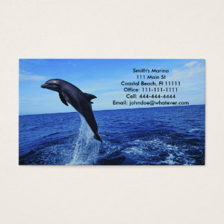 Dolphin Business-Personal Card