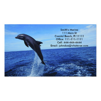 Dolphin Business-Personal Card Double-Sided Standard Business Cards (Pack Of 100)