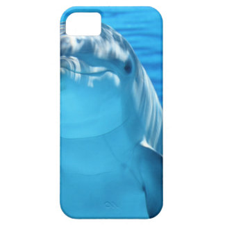 Dolphin iPhone 5 Covers