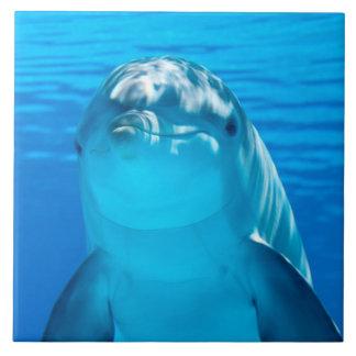 Dolphin Ceramic Tile