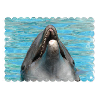 Dolphin Chatter 5x7 Paper Invitation Card