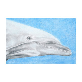 Dolphin - coloured pencil design stretched canvas print