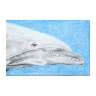 Dolphin - coloured pencil design canvas print