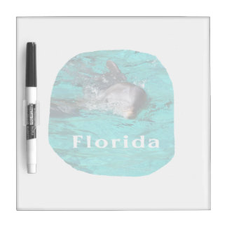 dolphin coming out of teal clear water florida dry erase board