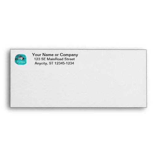 dolphin coming out of teal clear water florida envelopes