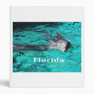 dolphin coming out of teal clear water florida.jpg 3 ring binders