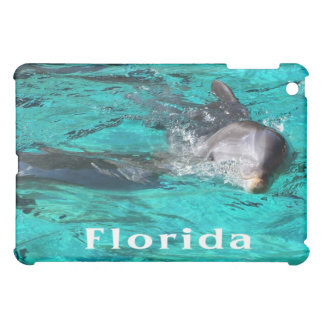 dolphin coming out of teal clear water florida.jpg cover for the iPad mini