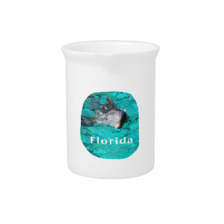 dolphin coming out of teal clear water florida beverage pitcher