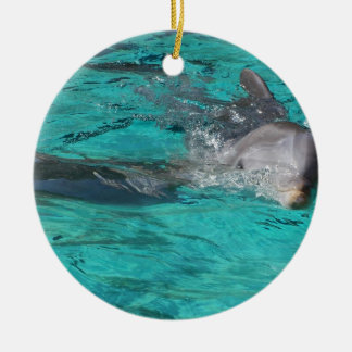 dolphin coming out of teal water full page ornaments