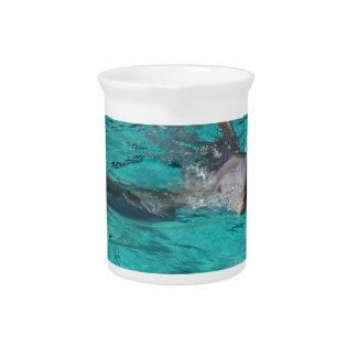 dolphin coming out of teal water full page pitcher