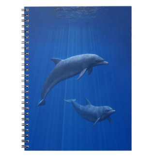 Dolphin Couple Notebook