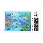 dolphins, marine, underwater, reefs, marinelife,