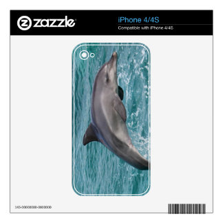 DOLPHIN DECAL FOR iPhone 4S
