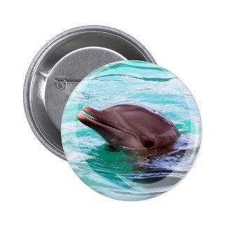 Dolphin Design Button