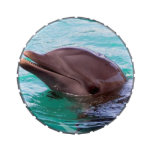 Dolphin Design Candy Tins