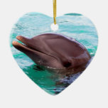 Dolphin Design Ornament