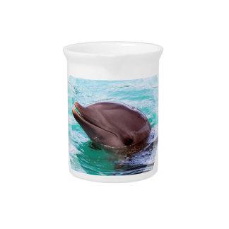 Dolphin Design Pitcher