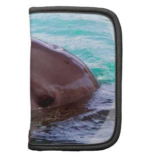 Dolphin Design Wallet Folio Organizer
