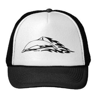 Dolphin designs hat