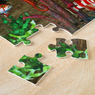 Dolphin Discovery 2 3D Aquarium Jigsaw Puzzle
