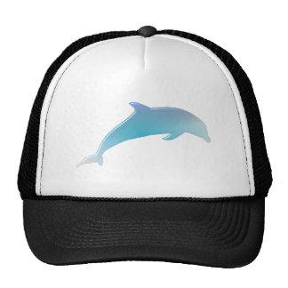dolphin dolphin hats