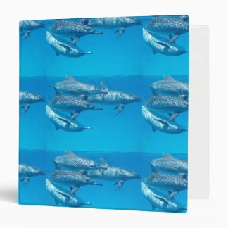 Dolphin Dolphins Fish Dive Ocean Water Swim Beach Binder