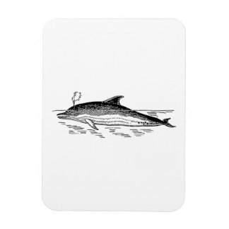 Dolphin Drawing Flexible Magnets