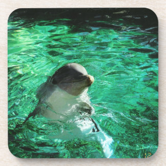 Dolphin Drink Coaster