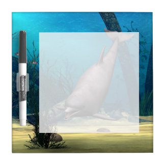 Dolphin Dry-Erase Board