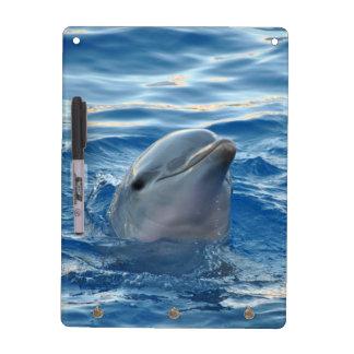 Dolphin Dry Erase Board