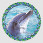 Dolphin Face Stickers