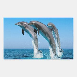 Dolphin Family Rectangular Sticker