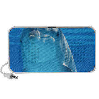 Dolphin Fish Animal Tropical Office Shower Party Mp3 Speaker