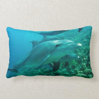 dolphin fish marine ocean under water swim pillows