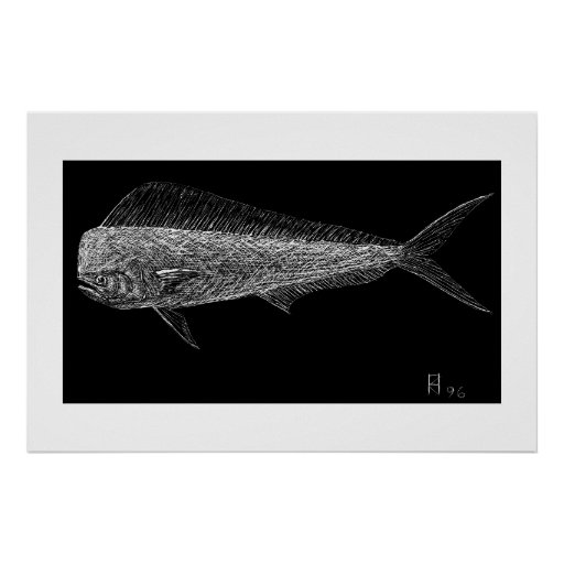 Dolphin fish poster