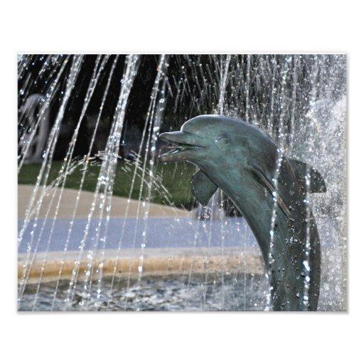 Dolphin Fountain Photo