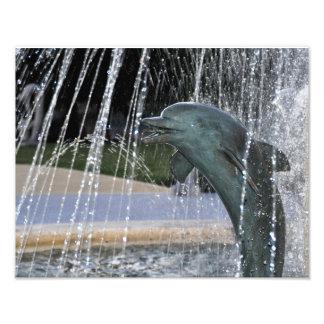 Dolphin Fountain Photo Print