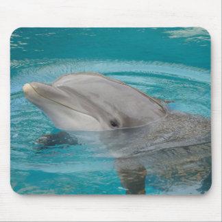 Dolphin Friend Mousepad