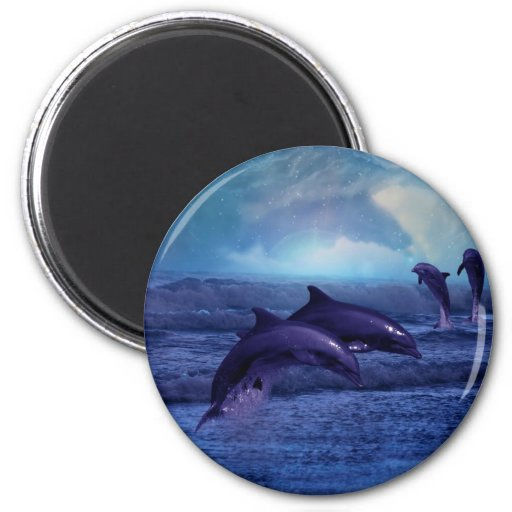 Dolphin fun and play 2 inch round magnet