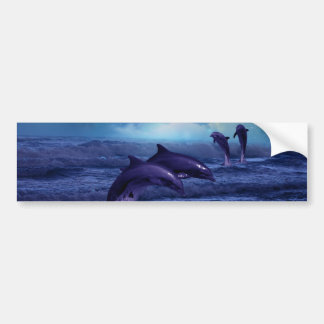 Dolphin fun and play bumper sticker