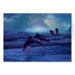 Dolphin fun and play greeting card