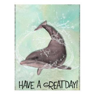Dolphin Greeting Postcard