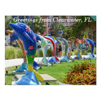 Dolphin greetings from Clearwater Florida postcard