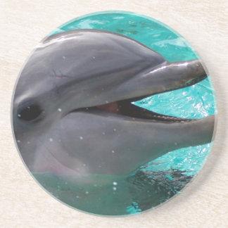 Dolphin head in aquamarine water beverage coasters