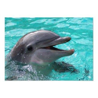 "Dolphin head in aquamarine water 5"" x 7"" invitation card"